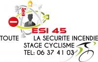 Logo esi 45